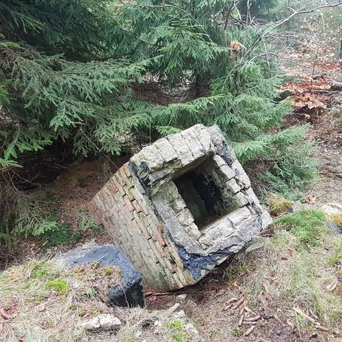 Lüneburgerheide Lostplacesgermany Bunker Lostplaces #bushcraft Wandern Outdoor High Angle View Day Outdoors No People Growth Nature Plant