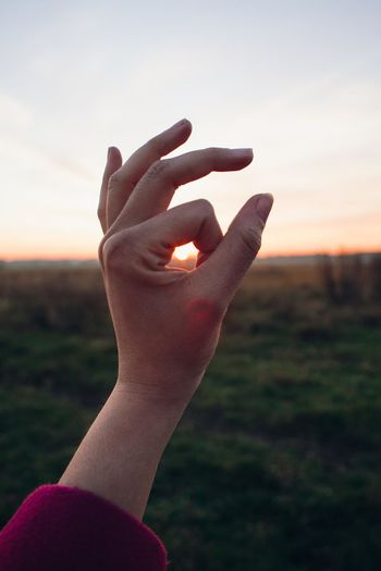 Close-up of hand holding hands over field against sky during sunset