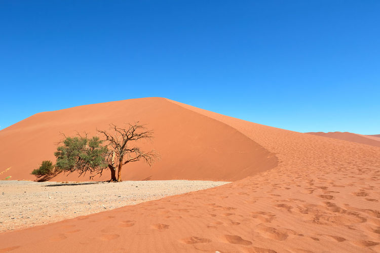 Sand dune in namib-naukluft national park