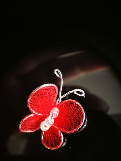Butterfly macro Butterfly Red Handmade