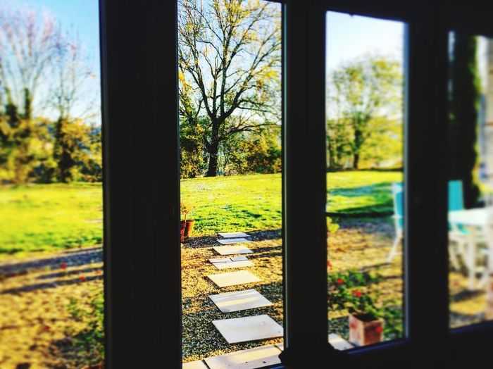 Today we are looking through the Oblong Window on this Beautiful Autumn Morning in the French Countryside near Saint Martin De Riberac France🇫🇷