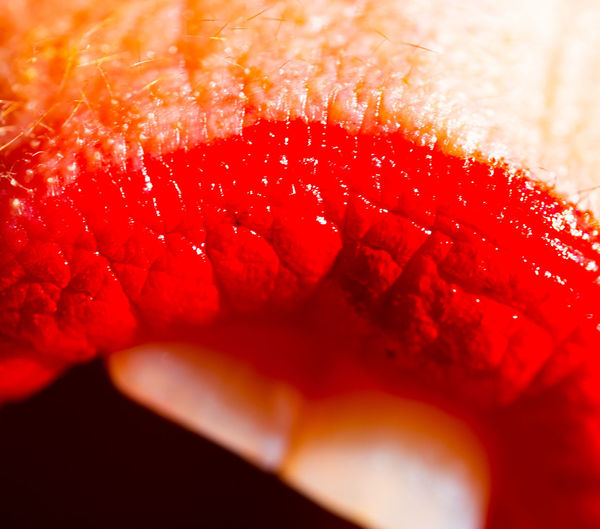 Pop mouth Kiss Ishootforaliving Expressionism Mouth Pop Pop Life Lips Valentine Want Food Red Selective Focus Extreme Close-up Full Frame Studio Shot Orange Color Food And Drink Freshness Close-up #NotYourCliche Love Letter My Best Photo