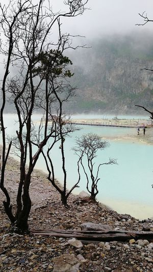 EyeEmNewHere Water Lake Nature Reflection Landscape Fog Tree Beauty In Nature Outdoors Scenics Tranquility Day Kawah Putih Tourist Destination Beauty In Nature Mountain Tourism Attraction Family Vacation Beautiful View Bandung, Indonesia Travel Photography Beautiful Nature Vacations Lost In The Landscape