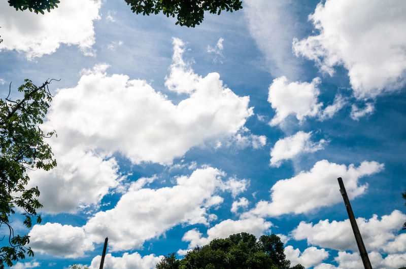 BLUE sky Bkue