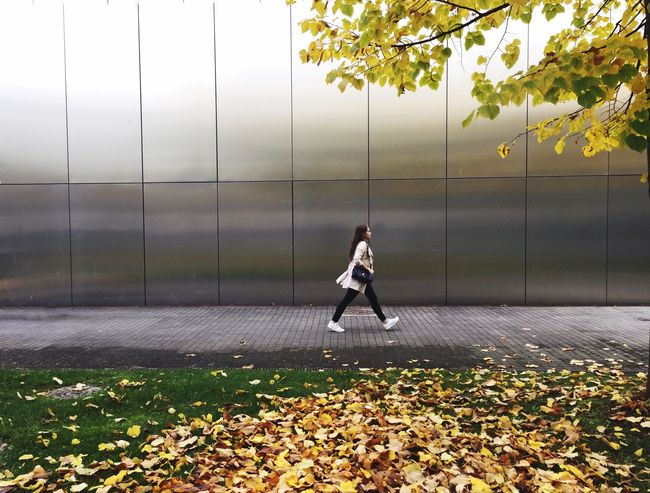 IPhoneography Milano Autumn Colors Autumn Leaves Streetphotography Yellow Tree Autumn In The City Colorful Trees Love Autumn Walking IPS2015Fall IPS2016Street waiting game Adapted To The City Press For Progress