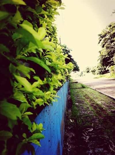 way walk Walking Around