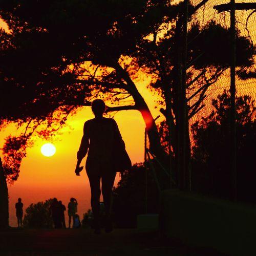 Silhouette Sunset_collection Sunset Outdoors Holiday Horizon Sonnenuntergang Sonne Urlaub Mallorca Baleares Balearic Islands Spanien SPAIN España Soller, Mallorca Canonphotography Canon Canonspain GERMANY🇩🇪DEUTSCHERLAND@ EyeEm Best Shots EyeEm Nature Lover Bestpicoftheday Skyshot Sunset Silhouettes