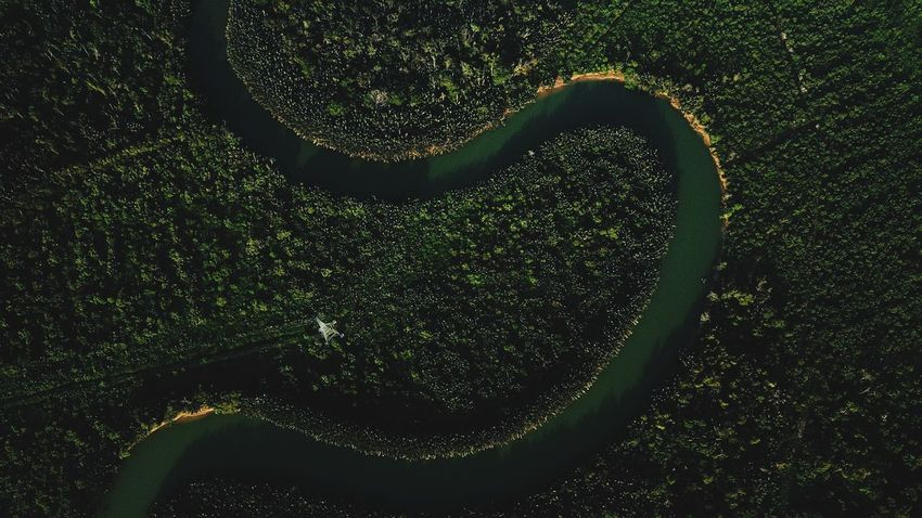 river mersing EyeEm Selects Mavicpro Aerialphotography Topdown Eyebird Aerial View Dji Johor, Malaysia No People Heart Shape Green Color Close-up Water Nature Emotion Outdoors Positive Emotion High Angle View Full Frame Beauty In Nature Day Creativity Land Plant Environment Drop Wet