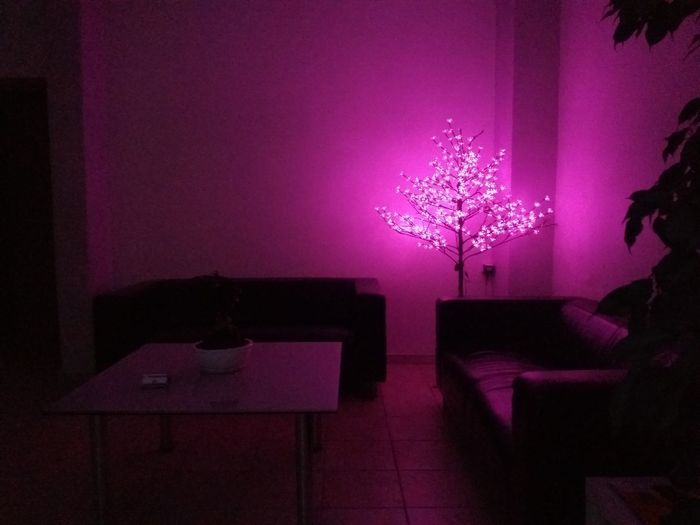 /Pink Xmas/ Best Christmas Lights Challenge Notwhatyoudexpect Somewhere The Purist (no Edit, No Filter) Thinkpink Empty Places Christmas Lights Treelight Christmastree Lighting Hotpink Fuchsia Minimal Intrresting Thessaloniki Greece
