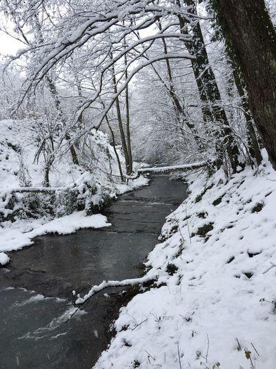 Snow River Cold Days Nature White Wintertime Winter North Black And White