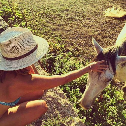 Taking Photos Relaxing Hanging Out Enjoying Life Hello World Vila Real Summertime Horse Photography  Horses Horselove Natures Diversities Wildlife Wildlife & Nature Wild Horses Landscape Love Pure Love ❤ Pet Love Pure Nature People And Places