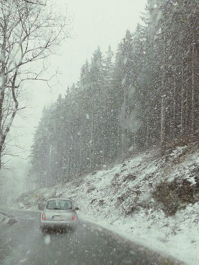 On The Car Autumn Outdoors Snow Snow ❄ Karpacz Mountain Nature Day