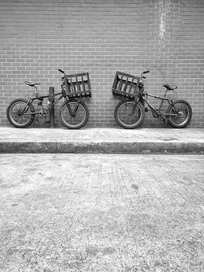 Twin Bicycle Wheel Two Detail Land Vehicle