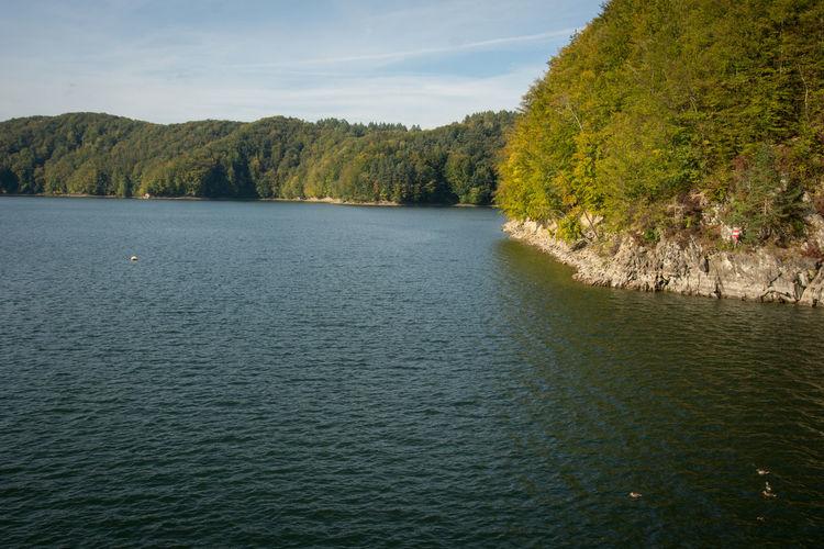 Autumn Green Nature Solina, Polska Tree Lake Leaf Rocks Season  Shore Water