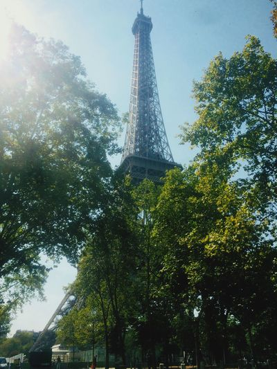 ❤️The City Of Love❤️ Romance Romantic City Of Love♡ City Tree Tall - High Low Angle View Built Structure Sky City Nature History The Past Building Exterior Travel Destinations Tourism Metal