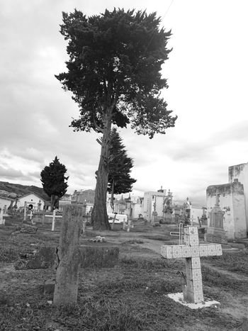 Tree Cross Hanging Out Taking Photos Check This Out Hello World Graveyard Colombia Tunja Colombia ♥  Boyaca Sky Black And White Sky And Trees Sky