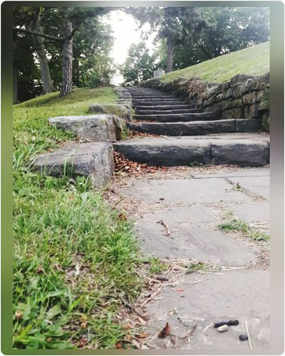 Stone steps nature Outdoors Grass Landscape