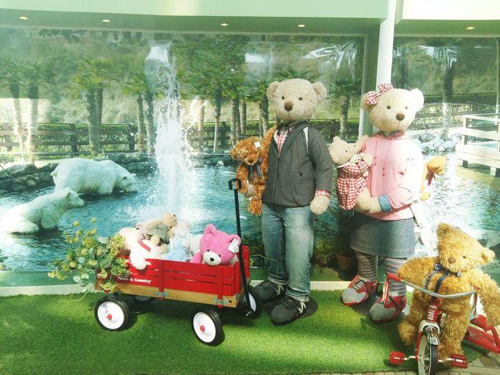 Teddy family 🐻🐻 Teddybearmuseum Jeju Seogwipo
