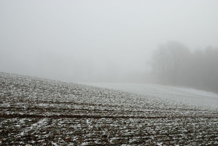 Kalter Nebel huellt an einem Wintertag ein kahles Feld und den schemenhaft im Hintergrund erkennbaren Waldrand ein, Rauhreif und ein wenig Schnee auf dem Ackerboden machen seine Strukturen plastisch sichtbar. Foto (c) Kay-Christian Heine Frost Frozen Misty Agriculture Barren Beauty In Nature Bleak Cold Cold Temperature Day Farmed Field Fog Landscape Minimalism Nature No People Outdoors Rural Scene Scenics Snow Tranquil Scene Tranquility Weather Winter