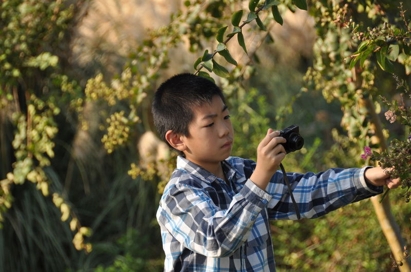 Teenage boy photographing plants at public park