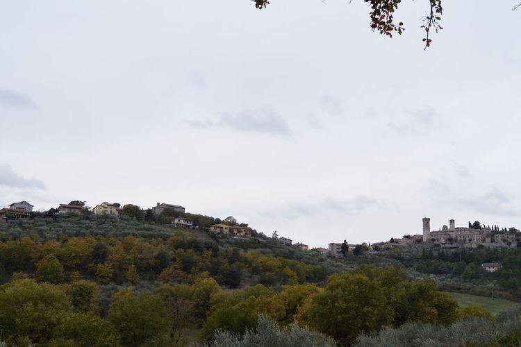 #clouds  #d3200 #Italia #landscape #nature #photography #nikon Colors #color #colorful #TagsForLikes #red #orange #yellow #green #blue #indigo #violet #beautiful #rainbow #rainbowcolors #col Landscape #Nature #photography