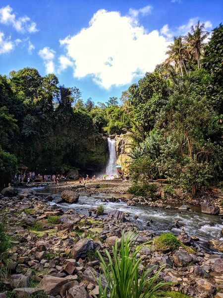 Scenic view of the waterfall in a jungle setting above a shallow bathing area. Lgg6 GoProhero6 Gopro Iphone8plus Kunjigangz Ateliernomads Bali2018 Bali Tegenungan Tree Water Spraying Sky Cloud - Sky