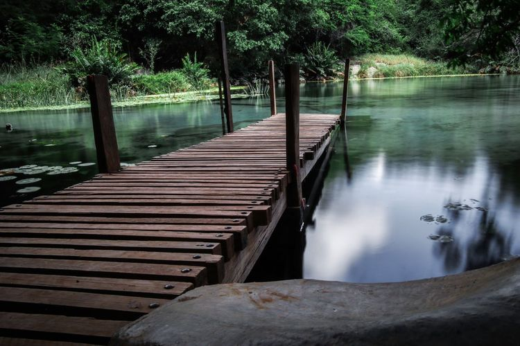Wooden bridge over lake in forest