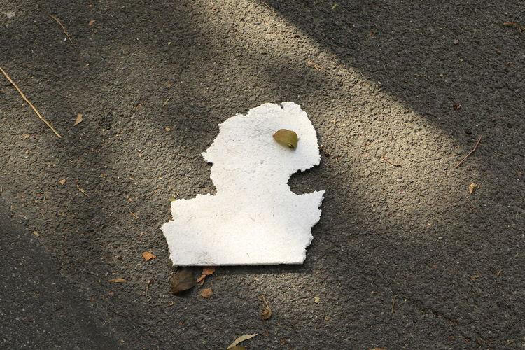 High angle view of human head made of polystyrene on sidewalk