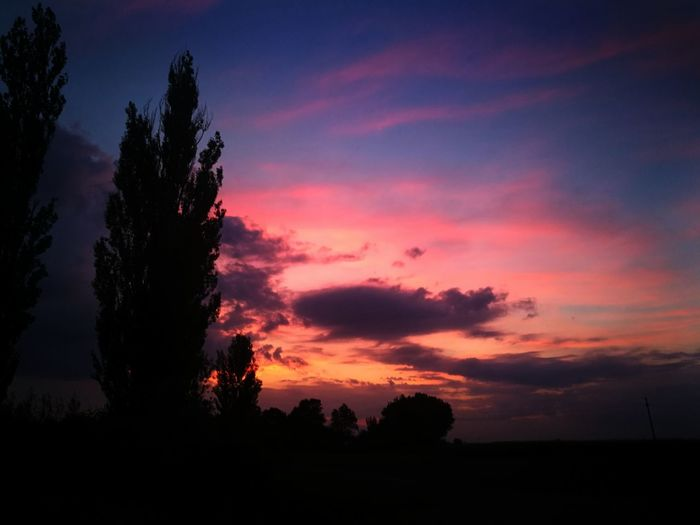 Sky Silhouette Cloud - Sky Sunset Scenics - Nature Beauty In Nature Tranquil Scene Tranquility Tree Plant Nature Environment Landscape No People Orange Color Dramatic Sky Non-urban Scene Idyllic Land Outdoors Romantic Sky