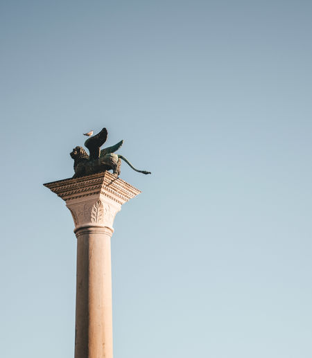 Venezia Venice, Italy Animal Animal Themes Animal Wildlife Animals In The Wild Architectural Column Architecture Art And Craft Bird Built Structure Clear Sky Copy Space Day Low Angle View Nature No People Outdoors Perching Sculpture Sky Statue Venezia Italia Venice Vertebrate