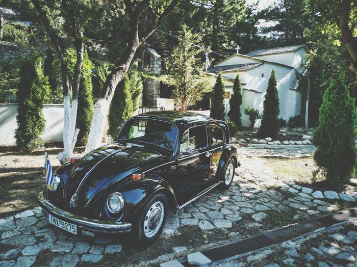 Retro Retro Styled Retro Car Volkswagen Beetle Volkswagen Church Parnitha Forest Tree Stationary Land Vehicle Architecture Built Structure Vehicle Vintage Car Vintage Collector's Car