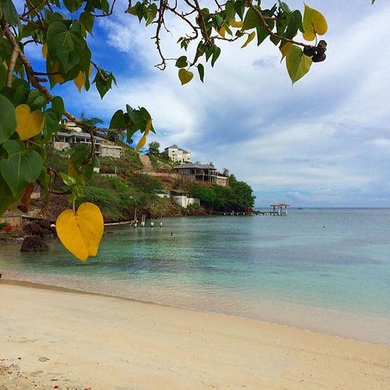 Nofilter Grenada Caribbean_beautiful_landscapes Color_n_nature Ig_caribbean Westindies_landscape Westindies_pictures Wu_caribbean Myhappyclicks Theblueislands
