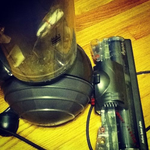 You know you have a good vacuum ,if it sucks up th inside of a tampon. LOL Dyson Strongvacuum