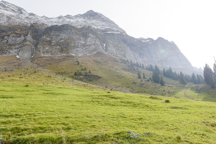 Saentis Beauty In Nature Day Grass Landscape Mountain Mountain Range Nature No People Outdoors Scenery Scenics Sky