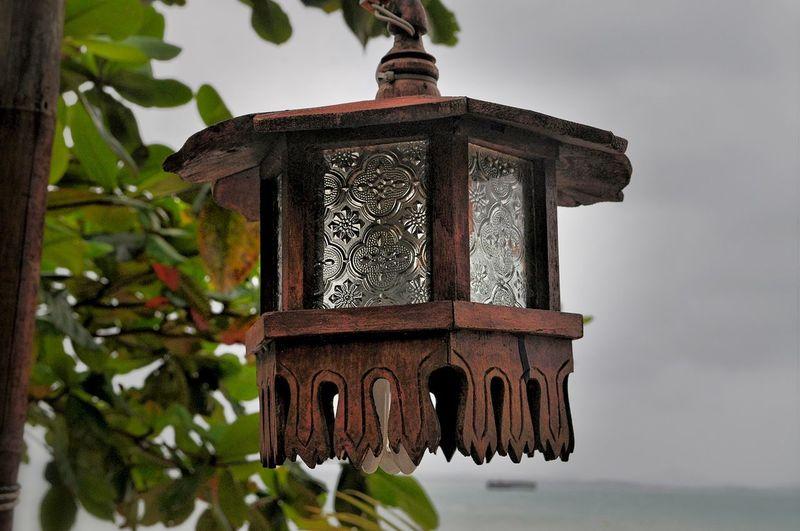 Lanterns In