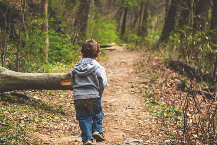 Full length of boy walking in forest