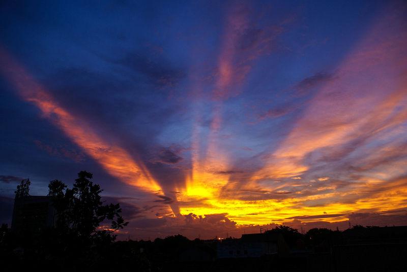 a sunset in Jakarta Sky Cloud - Sky Beauty In Nature Sunset Orange Color Scenics - Nature Silhouette Nature Dramatic Sky Outdoors Romantic Sky Power In Nature Looks Bird Sky Bird Phoenix Snow Park Flare In Sky