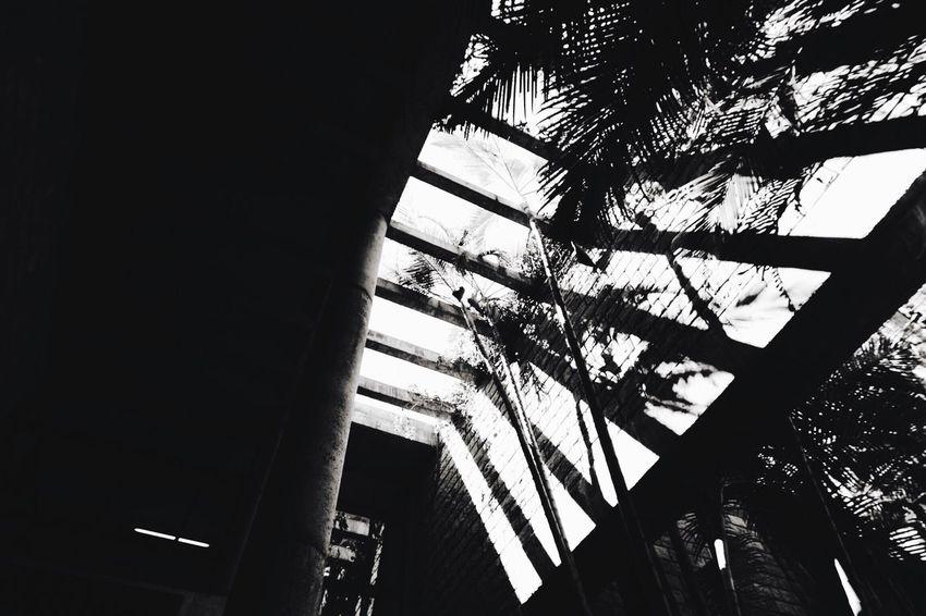 Blackandwhite EyeEm Bnw EyeEm Best Shots - Black + White Roof Pergola Light And Shadow Architecture_collection EyeEmBestPics EyeEm Eyeem Market The Week Of Eyeem Architectureporn EyeEm Best Shots Architecturelovers Architecturephotography Architecture The Architect - 2016 EyeEm Awards Leading Lines Lines Shadowplay Shadows On The Wall