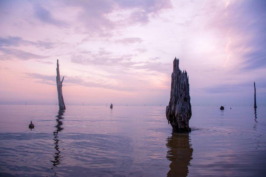 Landscapes With WhiteWall Tranquil Scene Louisiana Sunrise