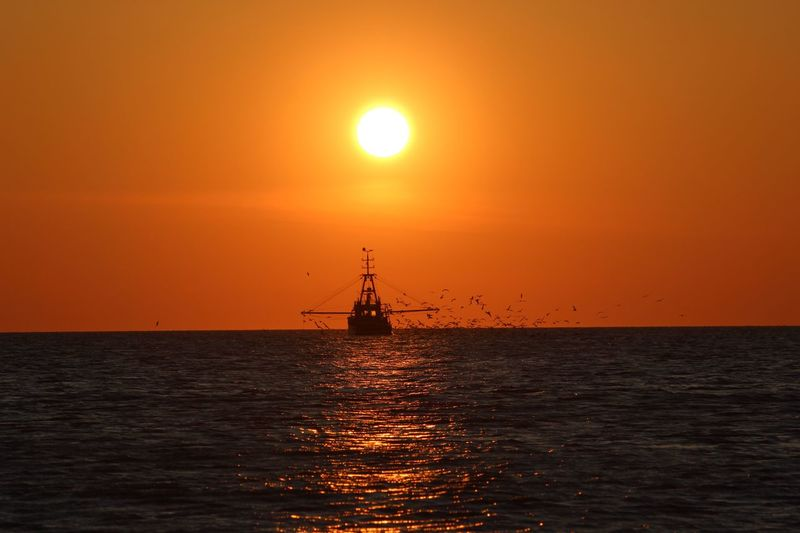 Water Sea Sunset Sky Scenics - Nature Orange Color Horizon Over Water Beauty In Nature Transportation Silhouette Nautical Vessel Tranquility Tranquil Scene Idyllic Waterfront Mode Of Transportation Sun Nature Horizon No People