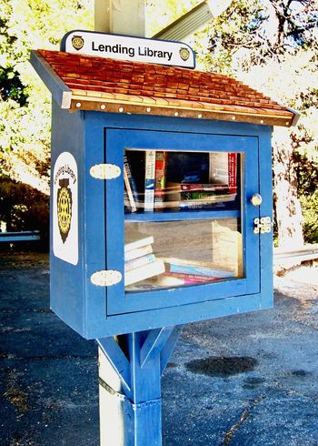 Mini Library Lending Books Library Text Reading Outdoors Community Trust Education Giving Communication Connection Street Glass Door Tiny Library Tiny