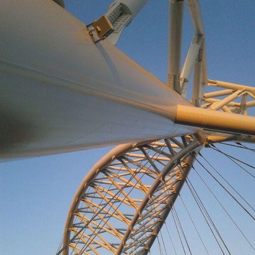 Il Ponte Della Scienza dabbasso