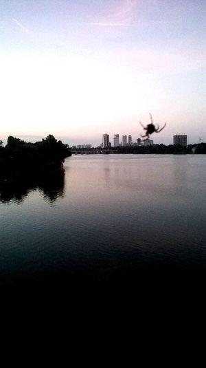 Giant SPIDER over TTown. Oklahoma Ttown