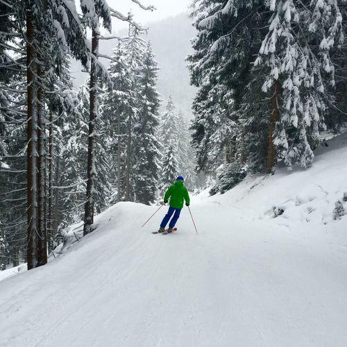Skiing Snow Mountains Winter
