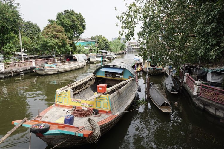Nautical Vessel Moored Transportation Water Tree River Mode Of Transport Day No People Outdoors Rowboat Nature