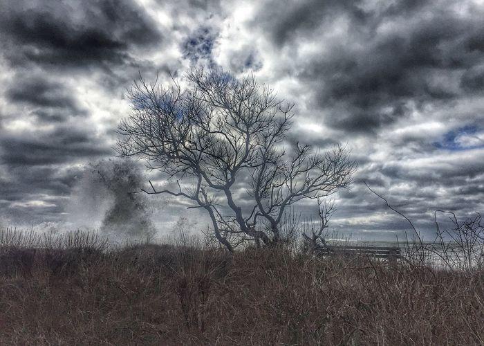 Sky Tranquil Scene Tranquility Cloud - Sky Landscape