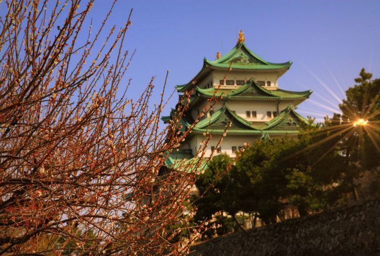 Low angle view of nagoya castle against clear sky