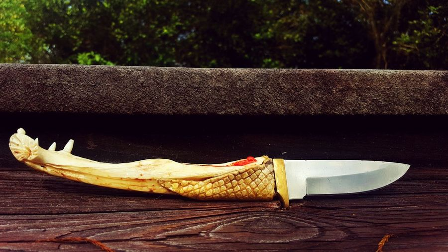 Gator jaw knife with inlaid coral, obsidian and amethyst. You can kind of see the red coral but the rest goes unseen here. EyeEm Selects No People Outdoors Day Close-up Knife Gator Jaw Athame Blade Nature Beauty In Nature Natural Things Everglades  Still Life Alligator Tranquil Scene The Week On EyeEm Bone  Animal Themes