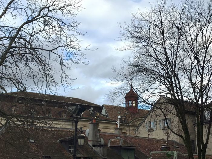 Architecture Building Exterior Built Structure Sky Bare Tree No People Tree Outdoors Day Old Town Old Buildings Buildings Architecture Old Building Exterior Sun Sky And Clouds Cityscape Old Town Rooftops Roofs