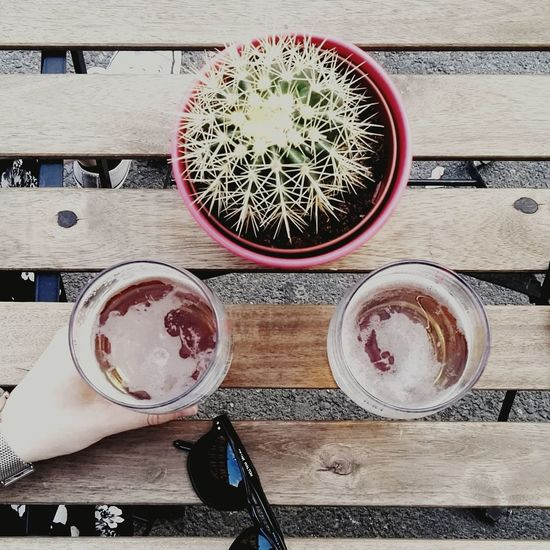 Directly above shot of hand holding drink by potted cactus on table